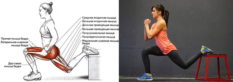 Активные мышцы при выпадах