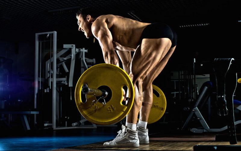 Становая на прямых ногах мышцы