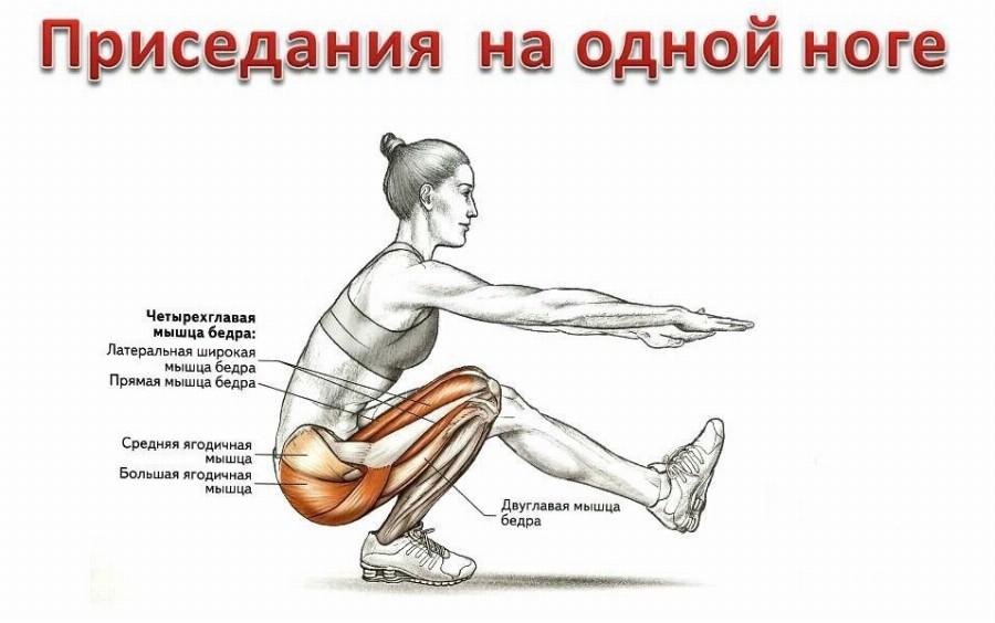 Анатомия приседаний на одной ноге