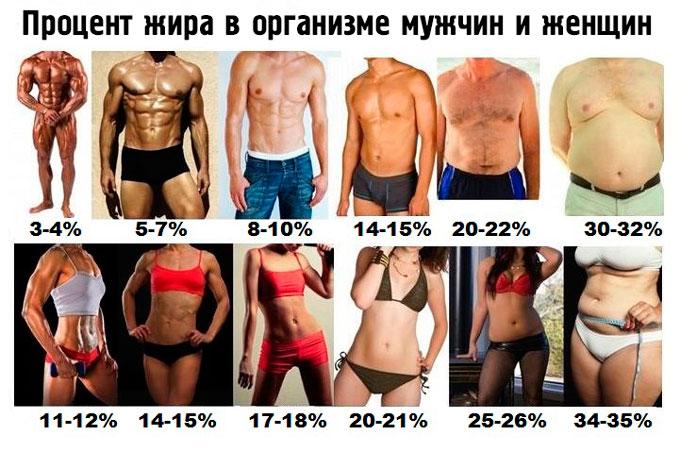 Процент жира в организме мужчины и женщины